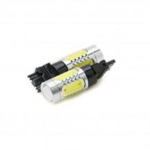 3156 Plasma LED Bulb